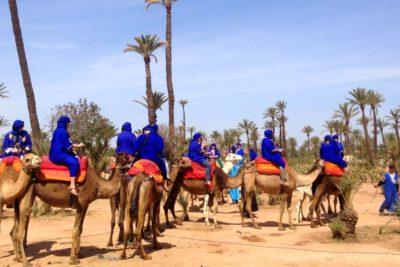 camel-ride-marrakech